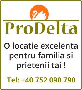 Pensiunea Prodelta, cazare excelenta